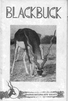Blackbuck cover